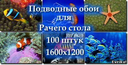 под водой, обои 1600х1200